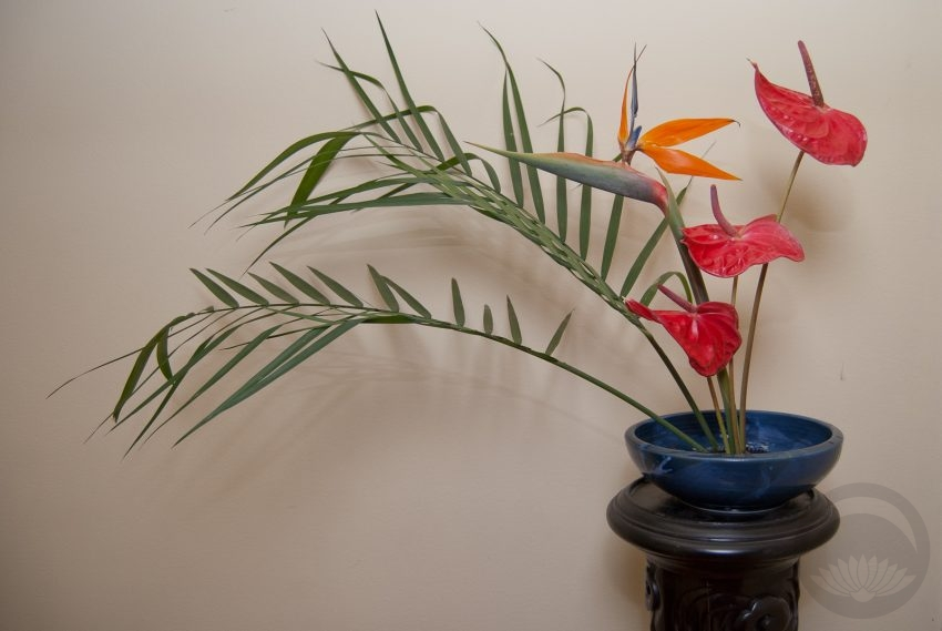 Tropical Fire Ikebana